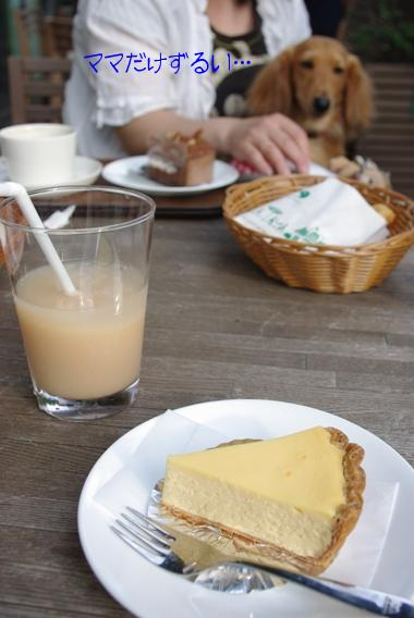 20100509 ケーキ.jpg