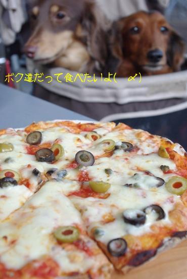 20100518 ピッツァ.jpg
