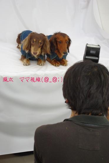 20100518 カメラマン.jpg