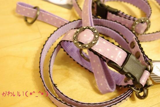 20100518 紫リード.jpg