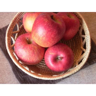 本物リンゴ