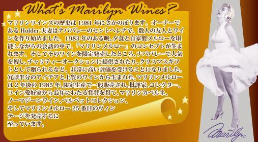 ワイン会説明2.JPG