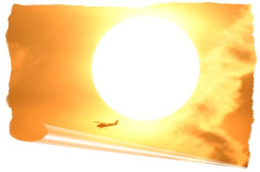 写真 「花のあるネイチャ- 風景 夕陽 航空機 野鳥 天体 自然観察」 徒然日記