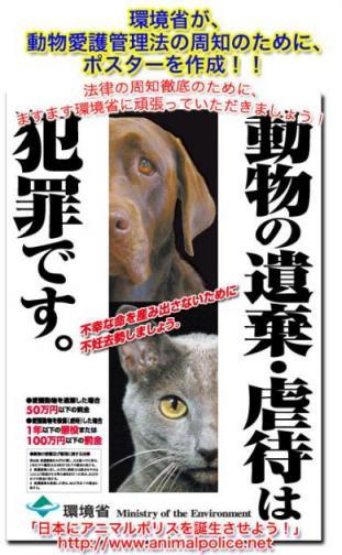 poster_0219_web.jpg