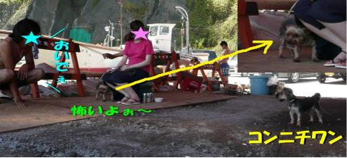 2009.8.16-4
