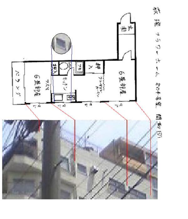 yonemoto804