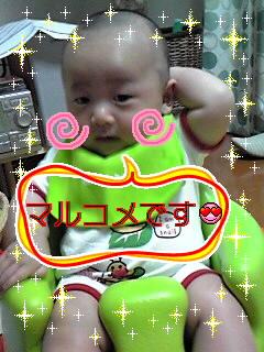 080519_マルコメリョウセイ~000.JPG