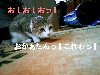 091111_093256.JPG