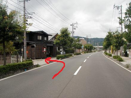P9130131.jpg