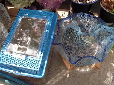 金魚鉢とプラケース