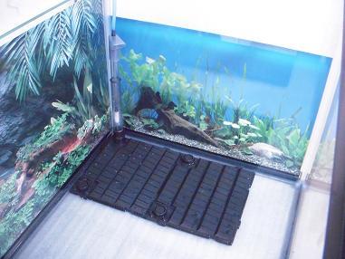 水草バックスクリーンと底面フィルター