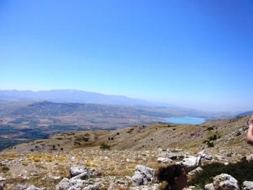 遠くに見えるのがヘルモン山