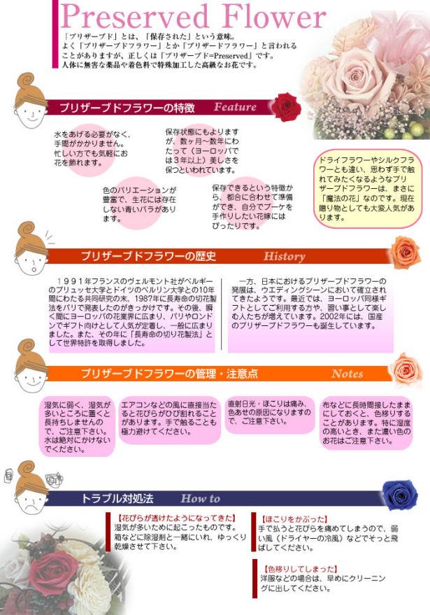 プリザーブド説明/プリザ/プリザーブド