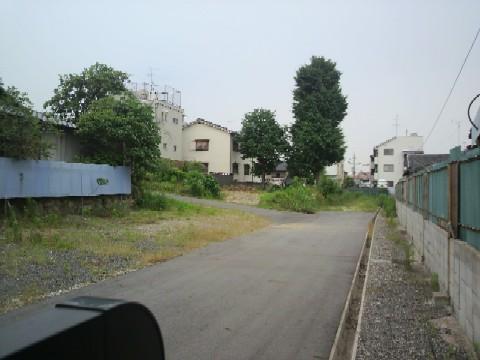 旧井田邸の裏側には大きな土地が広がっている