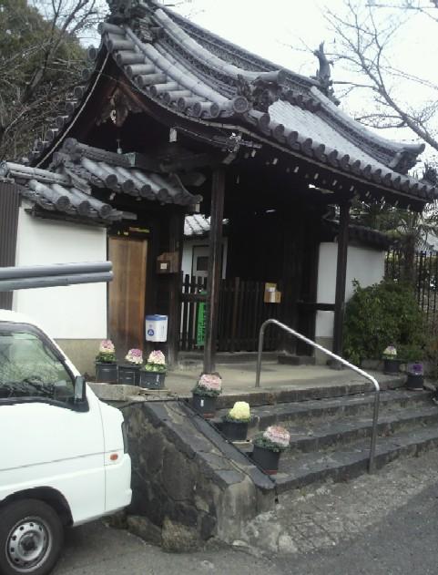 今辻子町のの西照寺は家康ゆかりの寺