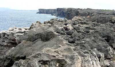 岩肌は石灰石でゴツゴツ。 歩きにくいぞ。