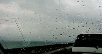 今日も雨だよ……