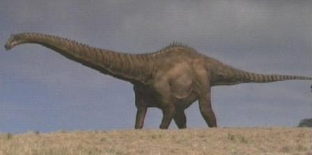 恐竜スーパーサウルス、寿命100才以上の長寿! | ウェル指圧マッサージ ...