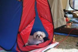 キャンプ2 107.jpg