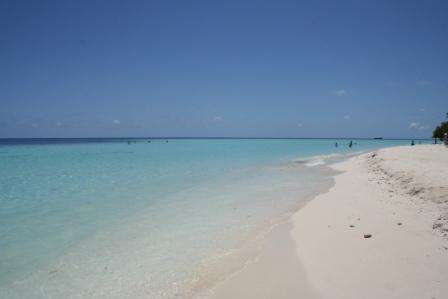 MALDIVES2007 377.jpg