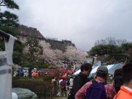 信玄公祭り2007 034.jpg