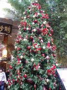 christmas in 2006 172.JPG