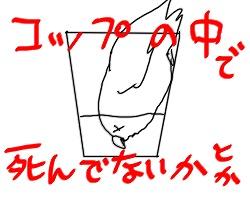 しんぱい2.jpg