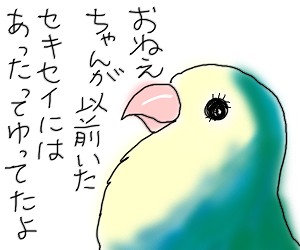 くすり2.jpg