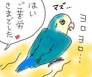 くすり6.jpg