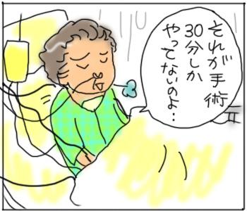 しゅじゅつ1.jpg