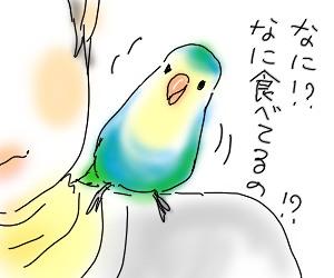 柿3.jpg