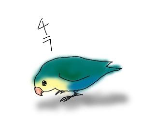 かーてん6.jpg