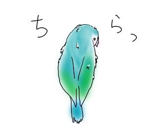 あそび2-1.jpg