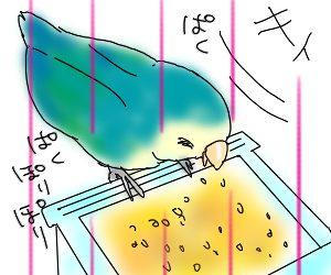 わすれんぼ1.jpg