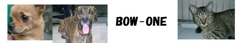 BOW-ONE