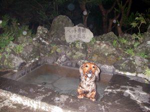 ひめ入浴シーン2