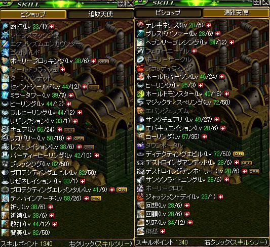 2010 0501 skill BIS天使.JPG