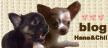 hana&chii_link
