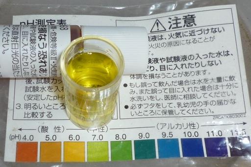 20100704トマト液肥ph.jpg