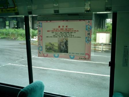 バス掲示3.jpg