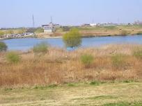 松戸河川敷