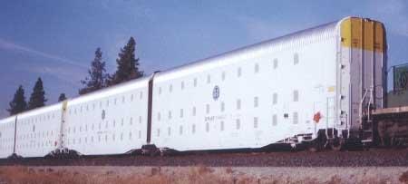 米国の鉄道監獄.jpg