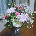 姉御!お花ありがとう
