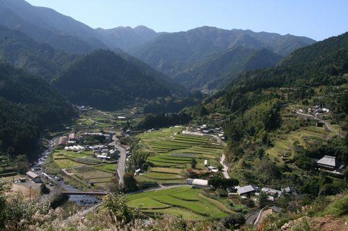 画像 : 老人ホームはいらない!?徳島県上勝町の「葉っぱビジネス ...
