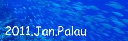 2011.1月パラオ旅行記index