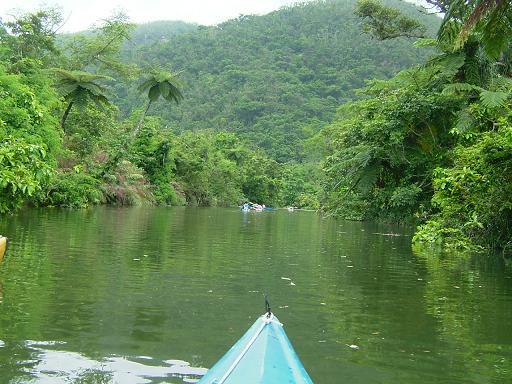 ジャングルの奥地へ.JPG
