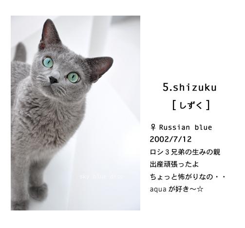 shizuku.jpg