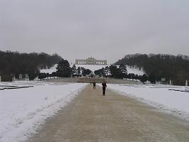 シェーンブルン宮殿の庭園.jpg