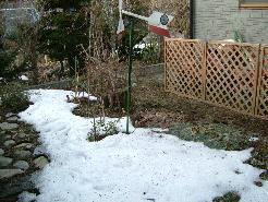 日陰の残雪.jpg