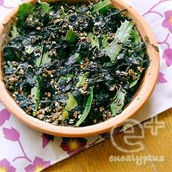 シャコバサボテン-葉摘みで摘み取られた葉っぱで葉伏せ実験。